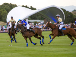 Rocky Mountain Polo Festival